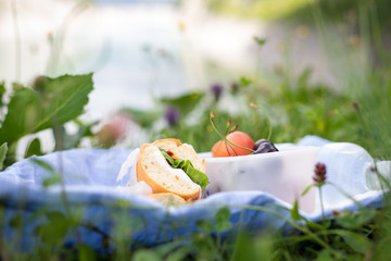 Sandwiches, fruits and a bottle of water in the grass. Selective focus