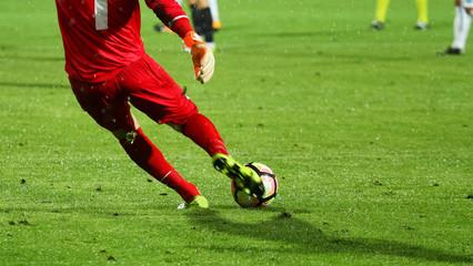 Soccer goalkeeper take a shot