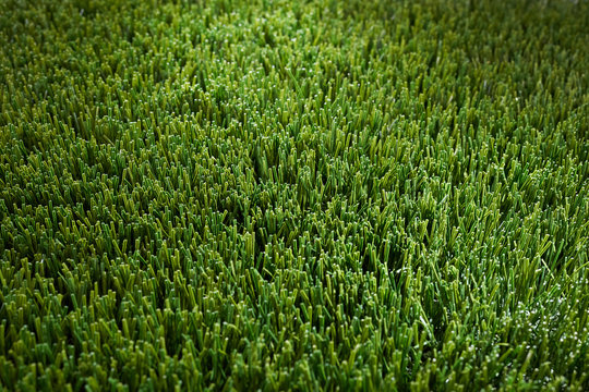 Background of artificial green grass