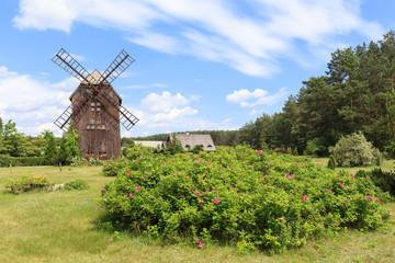 Zabytkowy wiatrak drewniany typu koźlak, w przeszłości charakterystyczny dla polskiego krajobrazu wiejskiego.
