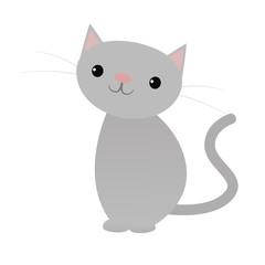 Sitting cute grey cat