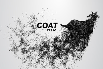 Goat of the particles. The goat consists of circles and points. Vector illustration.