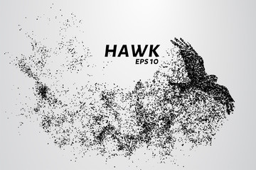 Hawk of the particles. The silhouette of a hawk consists of small circles. Wall mural