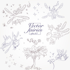 hand drawn set of magical fairies