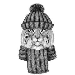 Wild cat Lynx Bobcat Trot wearing knitted hat and scarf