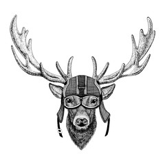 Deer wearing motorcycle helmet, aviator helmet Illustration for t-shirt, patch, logo, badge, emblem, logotype Biker t-shirt with wild animal