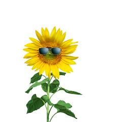 Sonnenblume mit Sonnenbrille auf weissem Hintergrund
