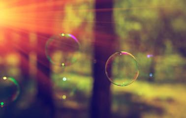 Papier Peint -  soap bubbles into the sunset with beautiful bokeh .
