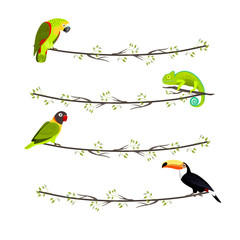 Set of garlands with tropical animals, parrot, chameleon, toucan, sitting on the branch on white background, vector illustration.