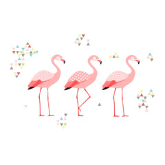 Three flamingos,boho style, isolated vector illustration.