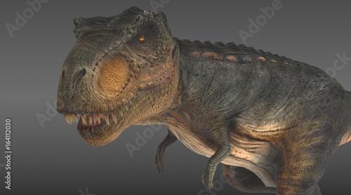 tyrannosaurus rex close up 3d rendering