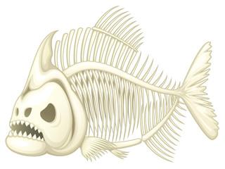 Vector illustration of a skeleton of a piranha fish.