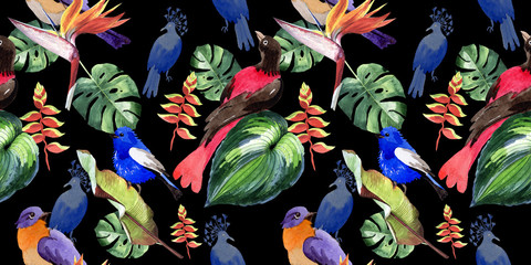 Sky birds of paradise  pattern in a wildlife by watercolor style. Wild freedom, bird with a flying wings. Aquarelle bird for background, texture, pattern, frame, border or tattoo.
