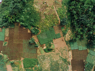 Foto op Canvas Afrika Aerial Photo of Agriculture in Africa