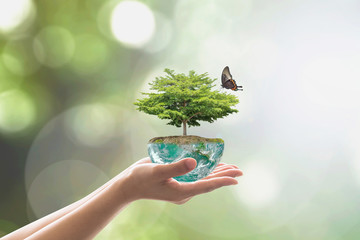 Planting tree on green globe for arbor day, and world environment conservation csr concept : Elements of this image furnished by NASA