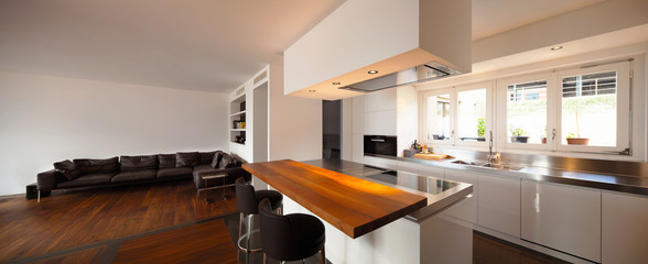 Beautiful kitchen and living in luxury apartment