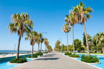 Beautiful sea promenade with palms in Limassol, Cyprus