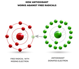 How antioxidant works against free radicals. Antioxidant donates missing electron to Free radical