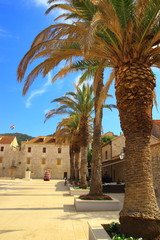 Street view with palms and old stone houses in Stari Grad town, Island Hvar, Croatia