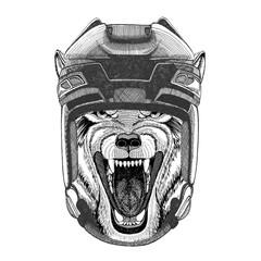 Wolf Dog Wild animal Hockey image Wild animal wearing hockey helmet Sport animal Winter sport Hockey sport