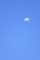 Clear blue sky which has half moon in daytime (can used as background)