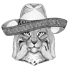 Wild cat Lynx Bobcat Trot Wild animal wearing sombrero Mexico Fiesta Mexican party illustration Wild west