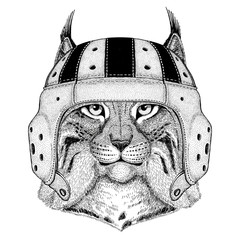 Wild cat Lynx Bobcat Trot Wild animal wearing rugby helmet Sport illustration