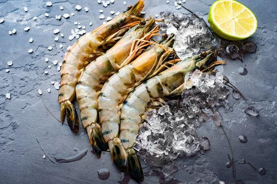 Fresh king prawns on ice