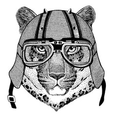 Wild cat Leopard Cat-o'-mountain Panther wearing biker helmet Animal with motorcycle leather helmet Vintage helmet for bikers Aviator helmet