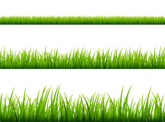 Green grass meadow border vector pattern. Spring or summer plant field lawn. Grass background