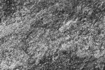 Close-up of a rock surface texture in black and white.