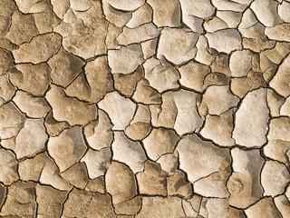 Sequia / Drought