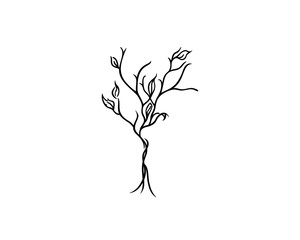 Line art drawing of a tree, vector illustration.