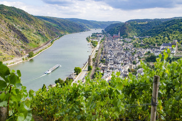 Rhein From Above