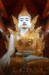 Nga Htat Gyi Buddha image in Nga Htat Gyi Pagoda of Yangon township of Myanmar.
