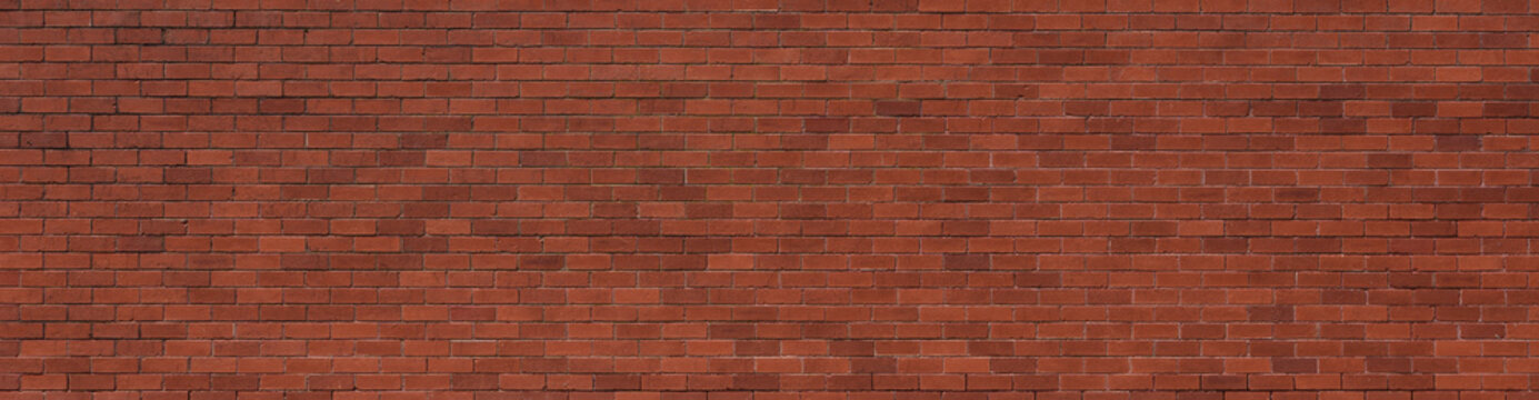 Red brick wall as background.