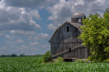old barn and cornfield under dramatic overcast sky in Illinois