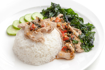 Rice with pork fried with sweet basil and chili sauce on white plate