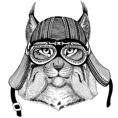 Wild cat Lynx Bobcat Trot Wild animal wearing biker motorcycle aviator fly club helmet Illustration for tattoo, emblem, badge, logo, patch