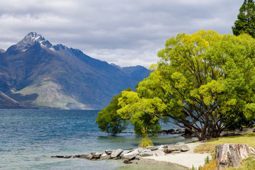 Lake Wakatipu-New Zealand