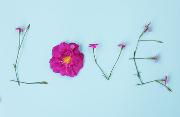 Word LOVE written with carnation and wild rose flowers