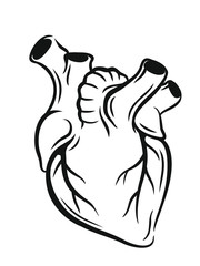 Vector medical heart