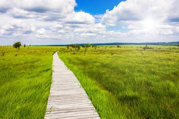 Einzigartige Aussicht auf dem Steg mit Weitblick über die Landschaft im Naturschutzgebiet Hohes Venn in Deutschland und Belgien