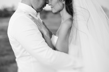 Wedding - the groom and the bride, portrait of loving young happy couple