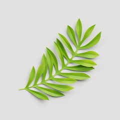 3d render, paper cut decor, green tropical leaf, isolated botanical clip art element