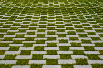 grass and cobblestone pavement   Wall mural