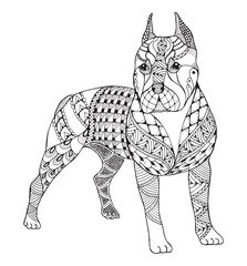 Pit bull terrier zentangle stylized, vector, illustration, freehand pencil, hand drawn, pattern. Zen art. Ornate vector. Lace.