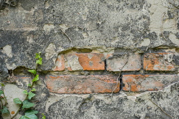 bricks behind peeling plaster - old wall closeup