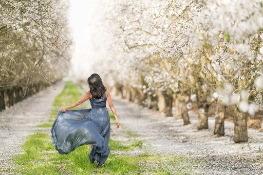 Almond Blossom in California