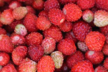Strawberry background. Strawberry berries.
